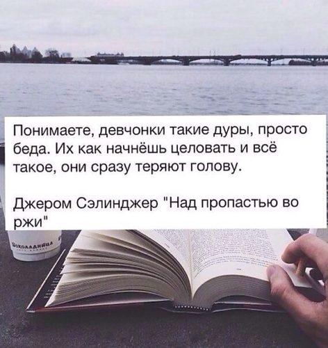 Цитаты над