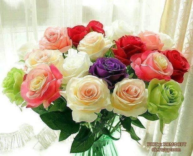 Фото цветы для милой девушке