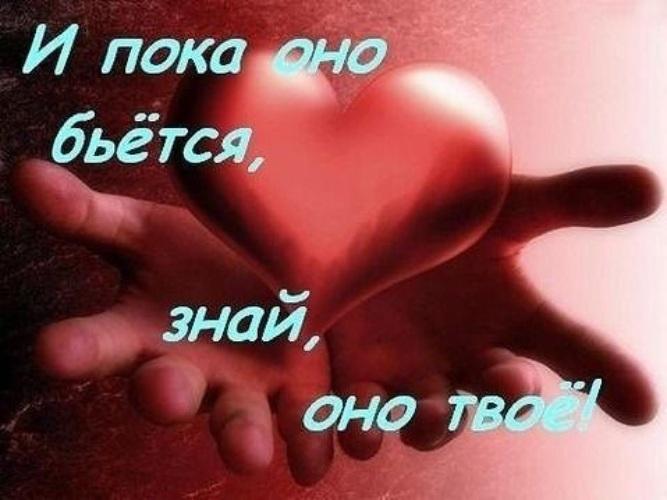 http://i4.tabor.ru/feed/2017-05-19/16802539/466476_760x500.jpg