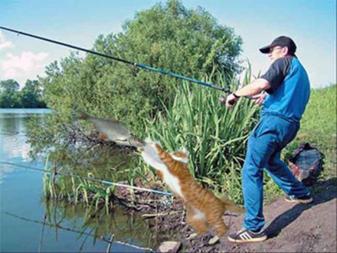 рыбалка в крыму на пресных водоемах видео