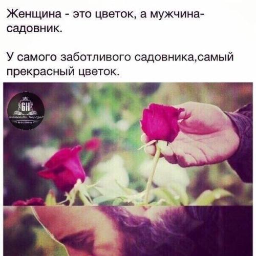 Все цветы прекрасны цитаты