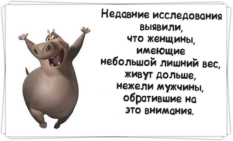 ПРО ДИЕТУ Приколы про диеты стихи о похудении и