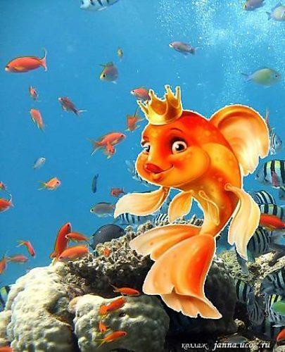 Рождением, картинки с нептуном и золотой рыбкой