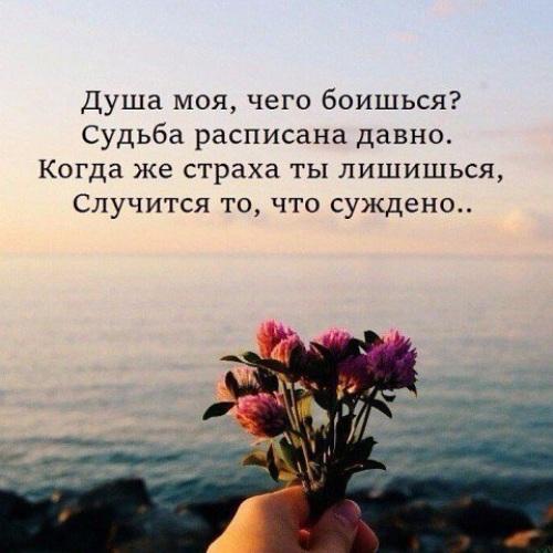 Цитаты о правильной волне жизни
