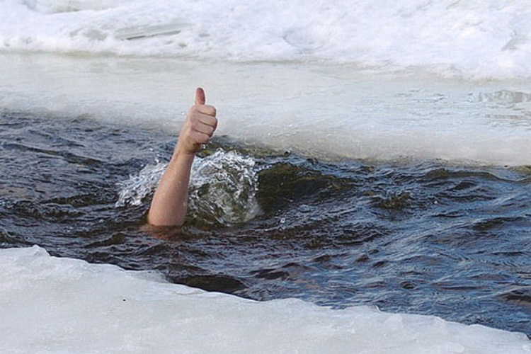 Рой, картинки купание в проруби на крещение прикольные