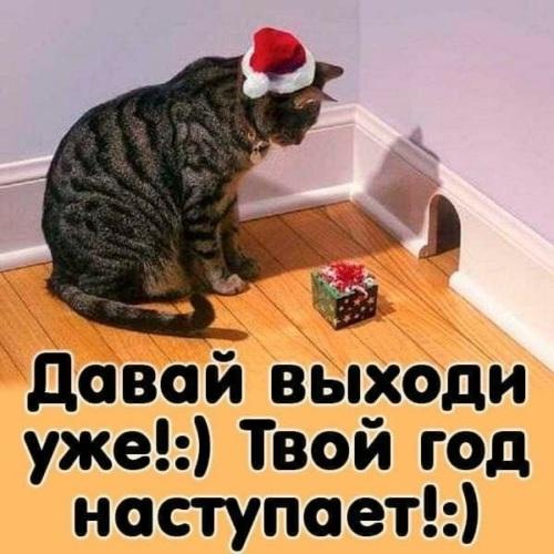 https://i4.tabor.ru/feed/2019-12-31/22888931/2119493_760x500.jpg