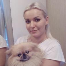 Фотография девушки Елена, 31 год из г. Чернигов