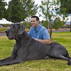 Фотография мужчины Dog, 46 лет из г. Калининград